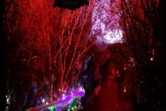 Natale-in-Grotta-3