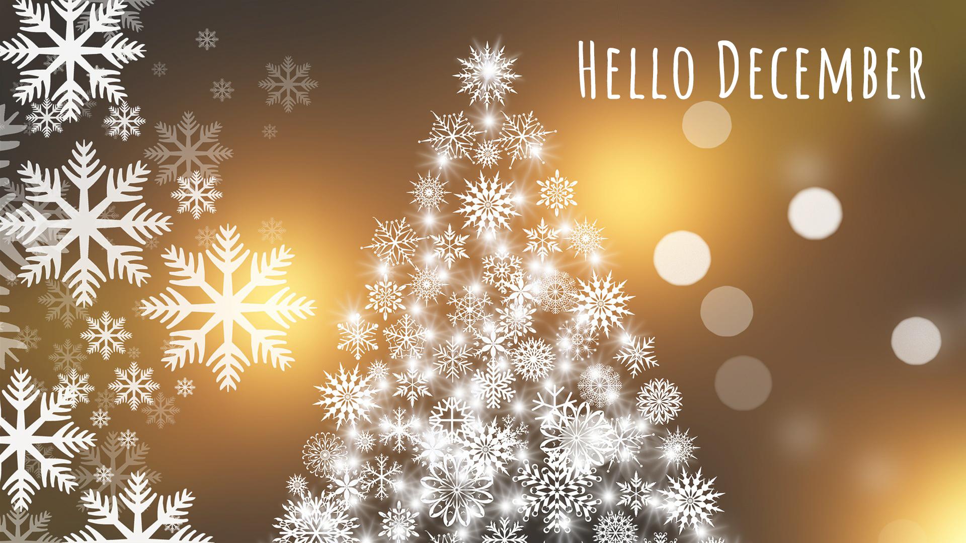 Open Gallery e Natale in Piazza: un ricco dicembre a Lugano!