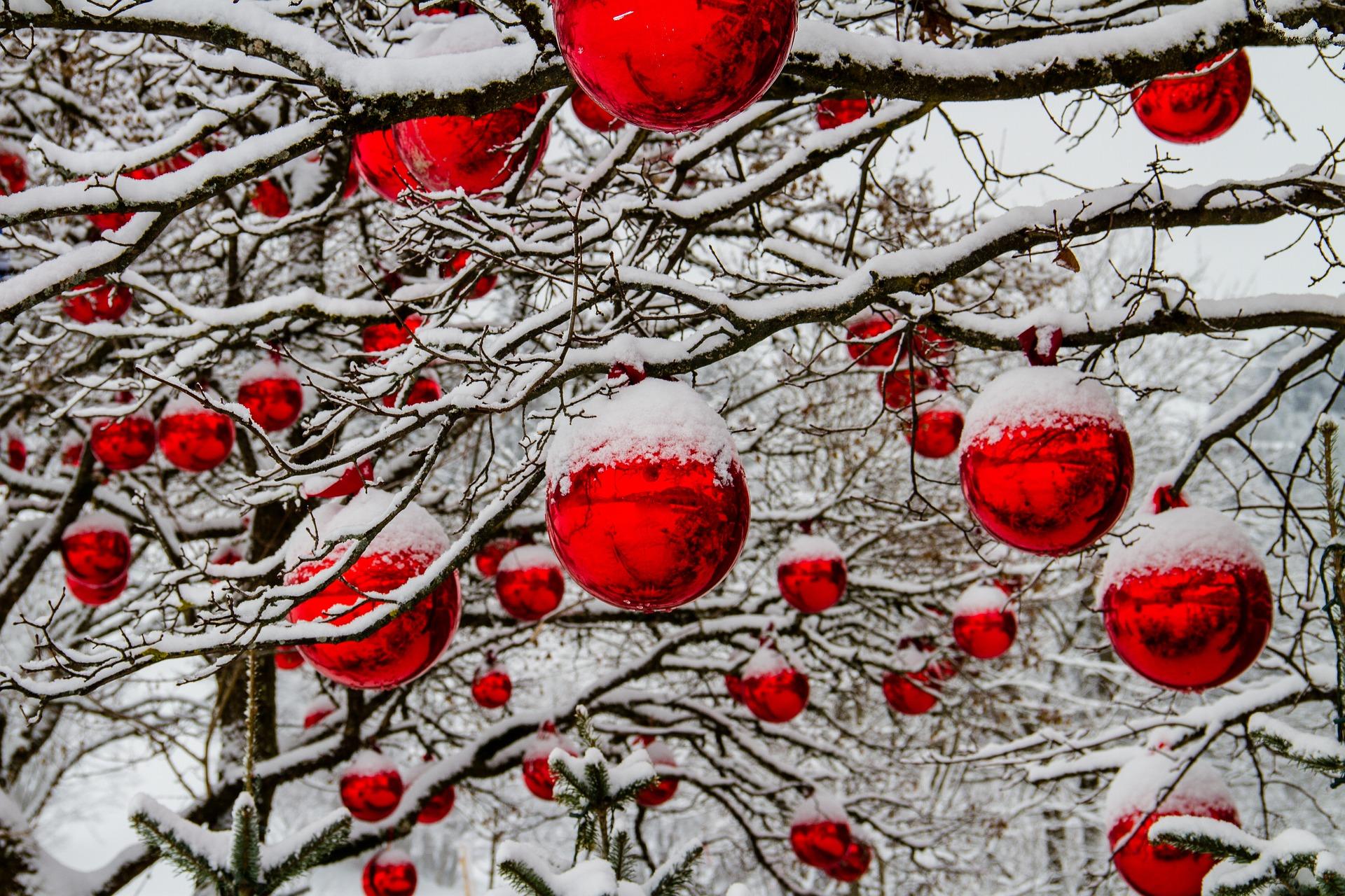 Natale Dizzasco Muronico: gli eventi