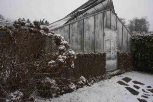 giardino invernale Villa Carlotta